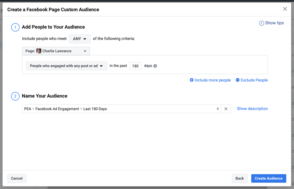 Set your 180 day audience duration then name your audience before you click Create Audience.