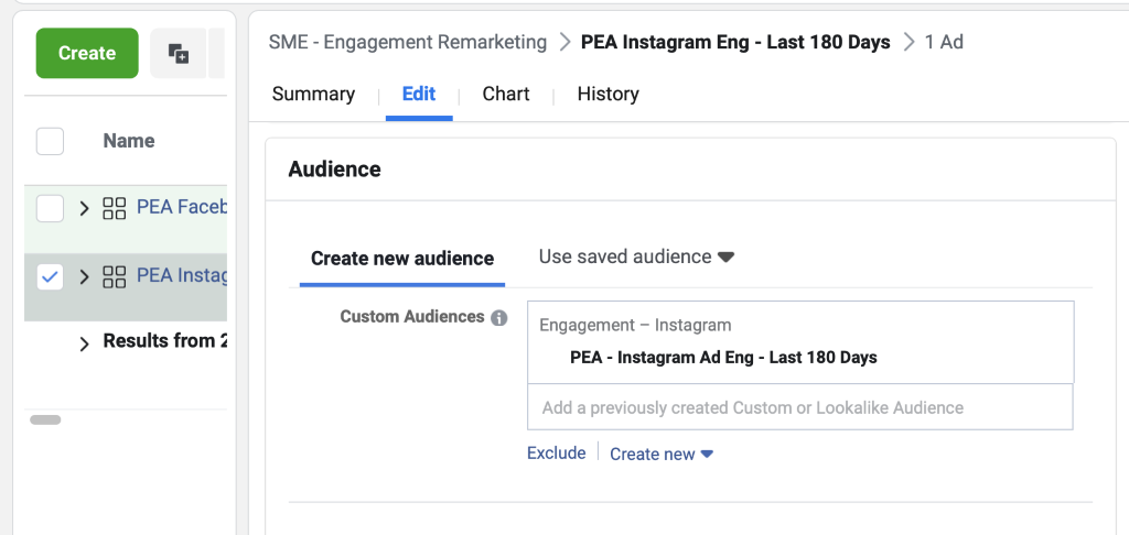 Remove the Facebook engagement audience and replace it with your Instagram engagement audience.