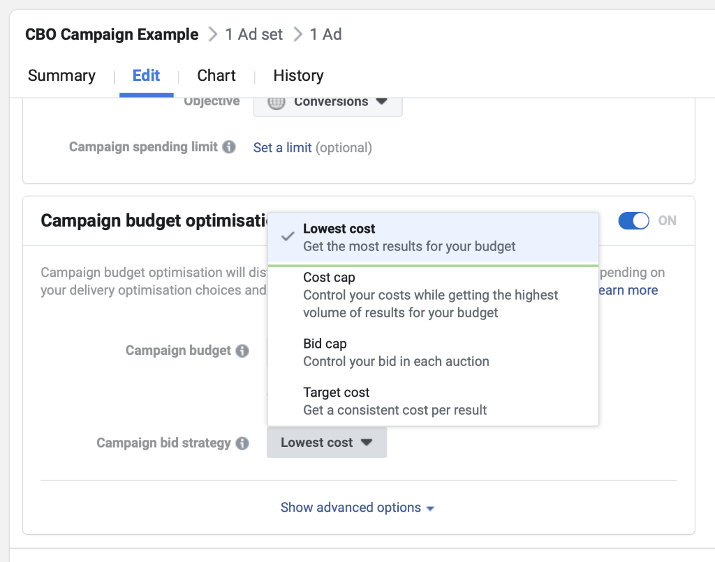Once you've created your draft in the campaign level set your bid strategy, in the example we are using Lowest cost.